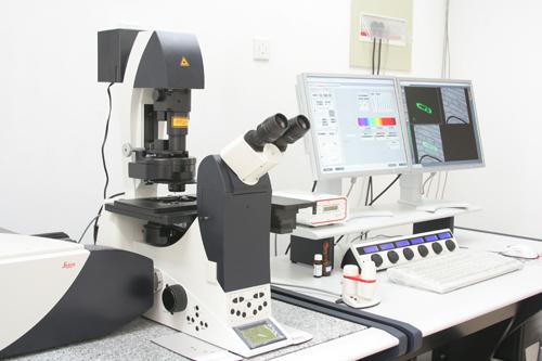 激光共聚焦-上海秉新生物科技有限公司